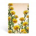 Diario a righe Margherita dei Boschi mini Paperblanks cm 9,5x14