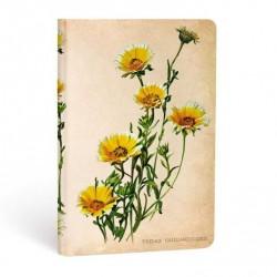 Diario a righe Margherite dei Boschi mini Paperblanks cm 9,5x14