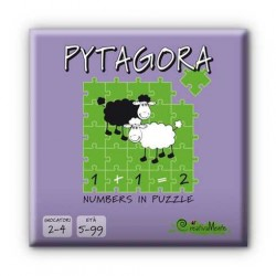 PYTAGORA gioco educativo matematica